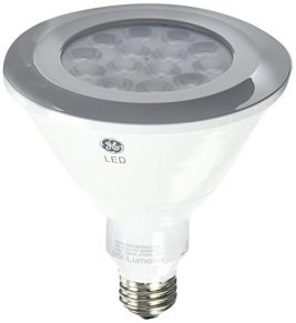 GE Lighting LED Flood Light